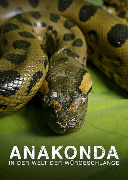 Anaconda - Silent Killer